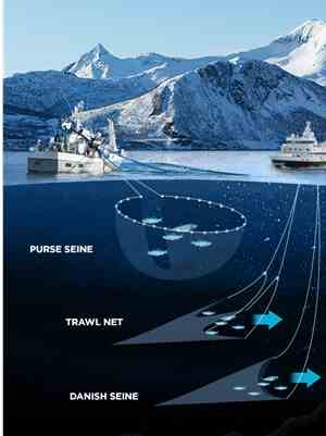 Active fishing gear: Purse-seine, trawl net, and danish seine